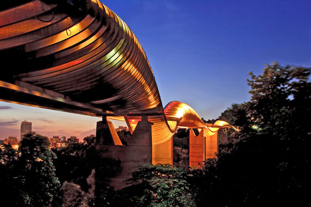 Henderson Waves Bridge